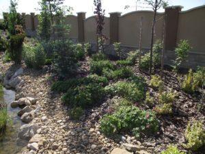 Budajenő kert részlet