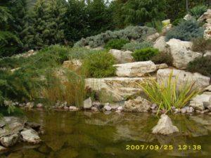Kerti és sziklakert