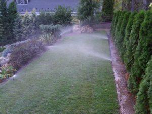 Spray szórófejes öntözés